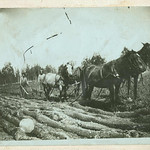 Walker Farm, Sam Evenson & Ole S. Plowing
